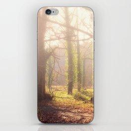 Woodland Fog iPhone Skin