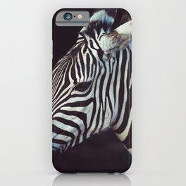ZEBRA IN SHALLOW FOCUS LENS iPhone Case