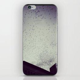 Birds of Chattanooga iPhone Skin
