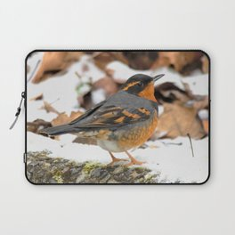 Male Varied Thrush Amid the Snow and Seed Laptop Sleeve
