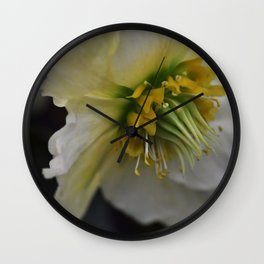 Helleborus I Wall Clock