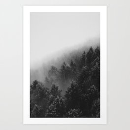 Misty Forest II Art Print