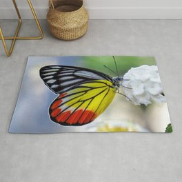 Asian Painted Jezebel butterfly Rug