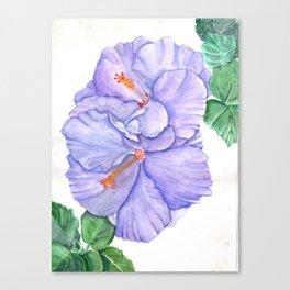 Smoosh Canvas Print