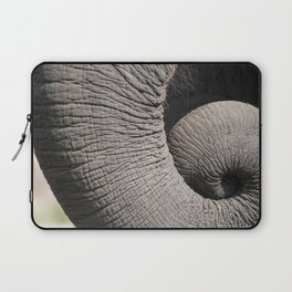Curl Up Laptop Sleeve