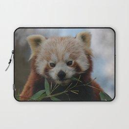 Beautiful Red Panda Laptop Sleeve