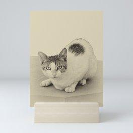 Meow Mini Art Print