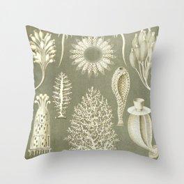 Naturalist Sponges Throw Pillow