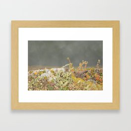 Grande Cache 1 Framed Art Print