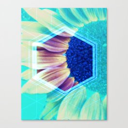 Sowing Seeds Canvas Print