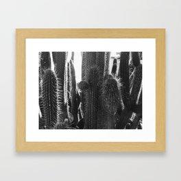 Kaktus / b&w Framed Art Print