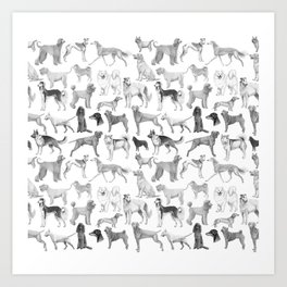 17 Dogs in ink Art Print