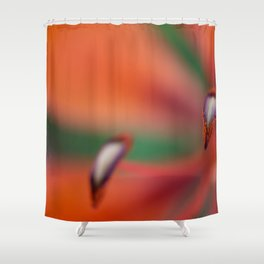 Fiori Dec 2019 - 01 Shower Curtain
