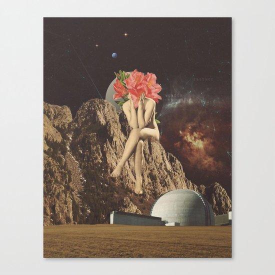 A New Life II Canvas Print