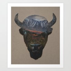 Bison Peak Art Print