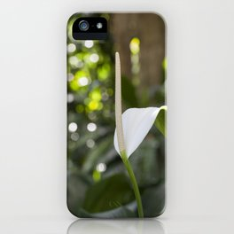 White Anthurium Lily iPhone Case