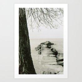 Stone Pier Under Tree Art Print