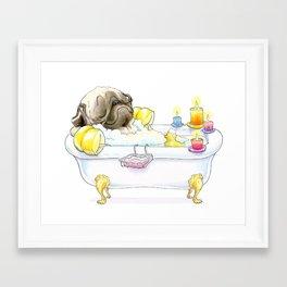 Pug in the Tub (fawn) Framed Art Print