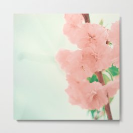 Shy flowers Metal Print