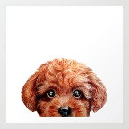 Toy poodle red brown Dog illustration original painting print Art Print