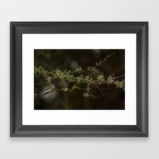Tree Fuzz Framed Art Print