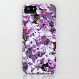 Lilac4 iPhone Case