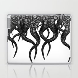 They mostly come at night ...... mostly Laptop & iPad Skin