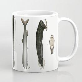 Print of Illustrated Eels Poster Coffee Mug