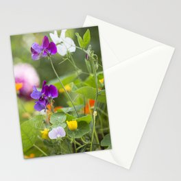 Summer Flowers colorful green meadow Stationery Cards