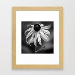 Sad Susan Framed Art Print