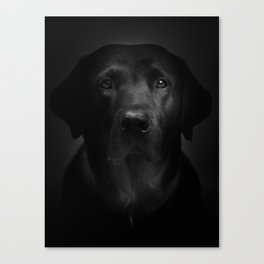 I met a girl (Black and white version) Canvas Print