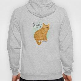 What's New Kitty Cat Hoody