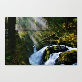 Sol Duc Falls Light Canvas Print