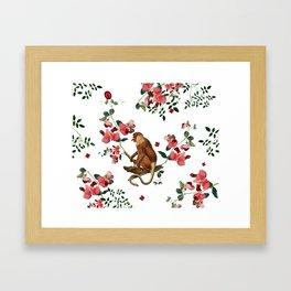 Monkey World: Nosy - White Framed Art Print