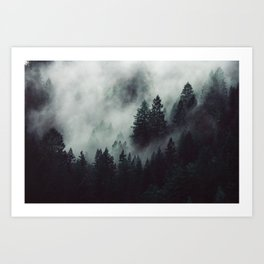 Rain in the forest Art Print