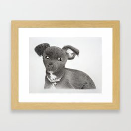 Max Framed Art Print