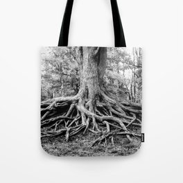 Tree of Life and Limb Tote Bag