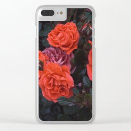 Bright and Hushed Clear iPhone Case