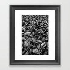 Mussell Shoals Framed Art Print