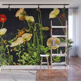 Poppies in Backlight II Wall Mural