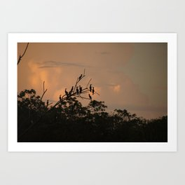 Sunrise On The Amazon River Peru Art Print