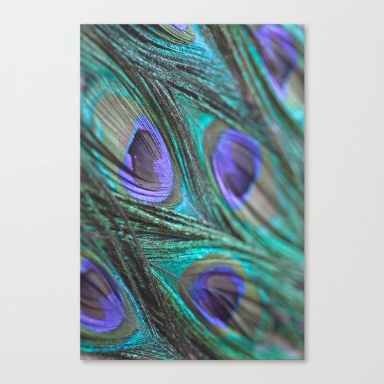 Peacock Fashion Canvas Print