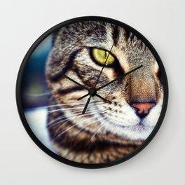 Bengal Tom Tabby Cat Portrait Wall Clock