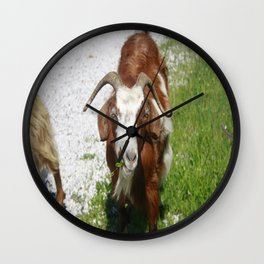 Whimsical Portrait of a Horned Goat Grazing Wall Clock