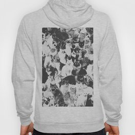 Cats Forever B&W Hoody