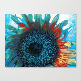 Eye of the Sunflower Canvas Print