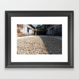 Drying Ginger - India,Kerala Framed Art Print