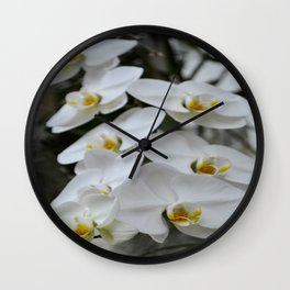 Immaculate Wall Clock