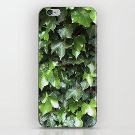 Evergreen Ivy iPhone Skin