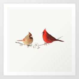 Red cardinal birds Art Print